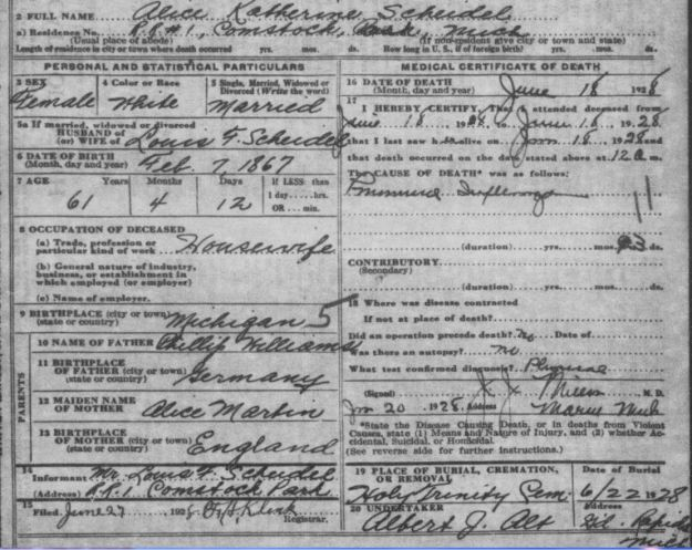 death certificate of Alice Katherine Williams Scheidel
