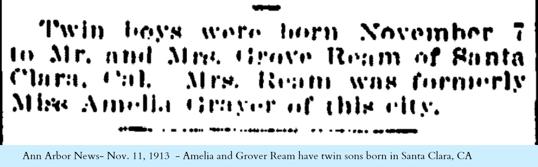 1913 Nov 11 Twin Boys Ann Arbor News page 3